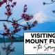 A Trip to Mount Fuji
