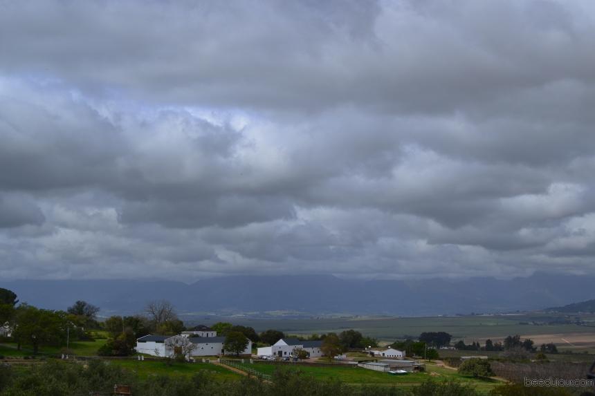 ayama farm view