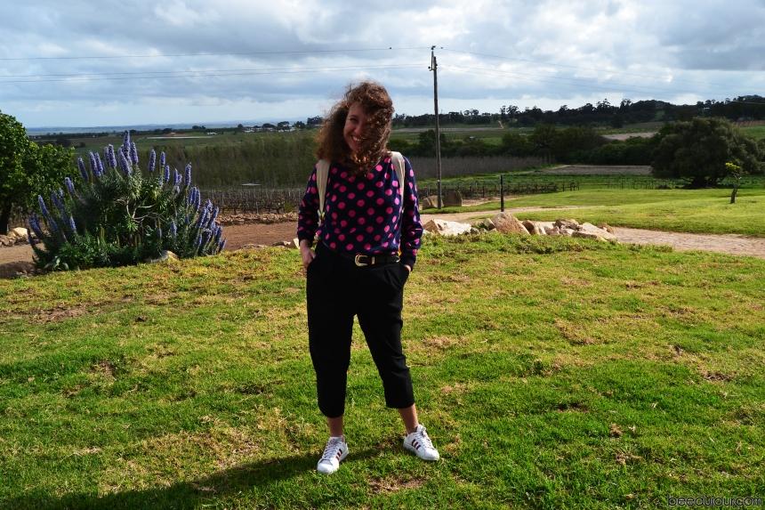 ayama wines farm view