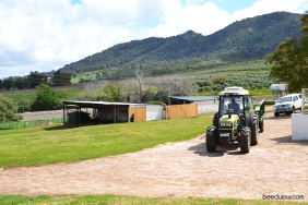 ayama wines tractor