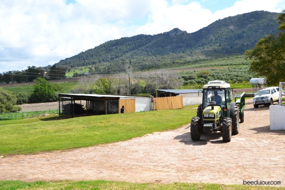 ayama wines tractor