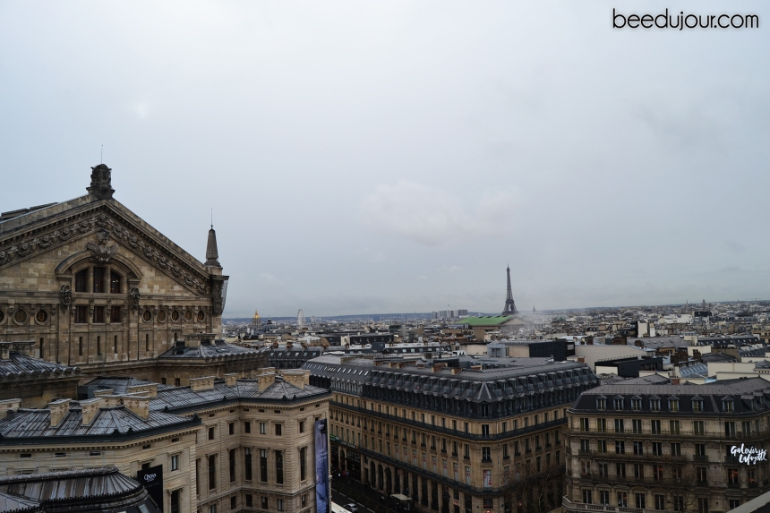 winter in paris galeries rooftop