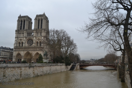 winter in paris notre dame 3